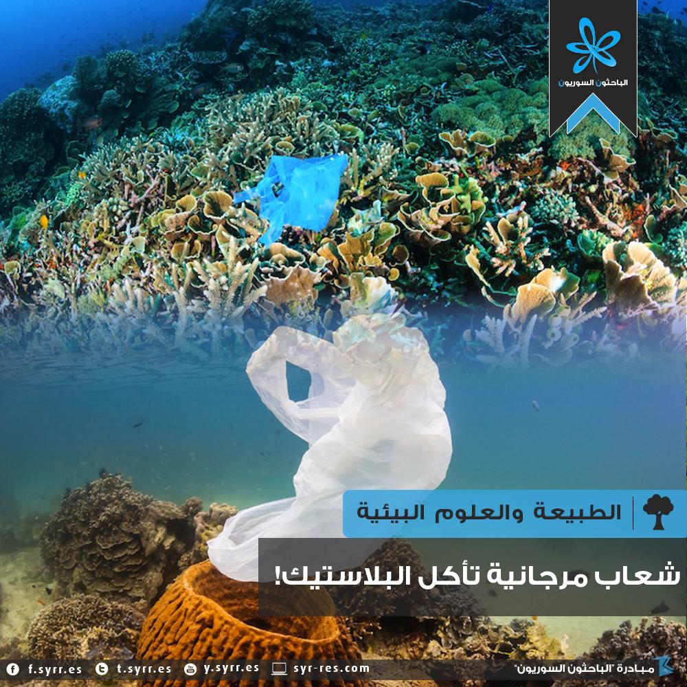 شعاب مرجانية تأكل البلاستيك!