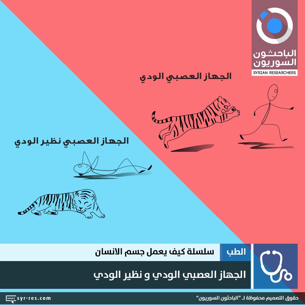 c9bacf2ec1f4e الباحثون السوريون - سلسلة